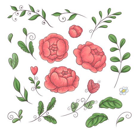 A set of peonies and floral elements in the style of hand-drawing in 2019 coral trend colors. Vector illustration.