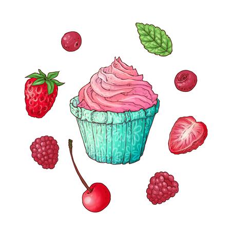 Set cupcake raspberry strawberry cherry, hand drawing. Vector illustration. Çizim