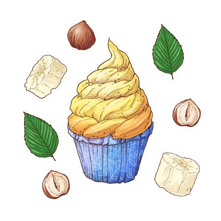 Set of banana nuts cupcake. Hand drawing. Vector illustration. Çizim