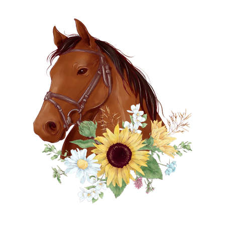 Horse portrait in digital watercolor style and a bouquet of sunflowers and daisies 免版税图像