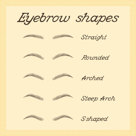 Eyebrow shapes. Various types of eyebrows. Vector.