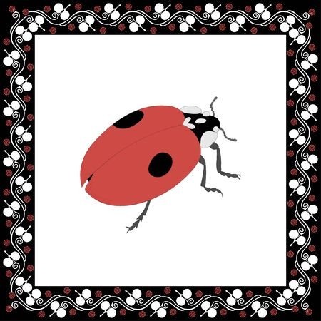 Ladybird color illustration in Greek floral frame. Vector.  イラスト・ベクター素材