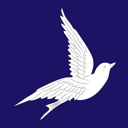 Flying white dove. Isolated bird on blue background. Vector.