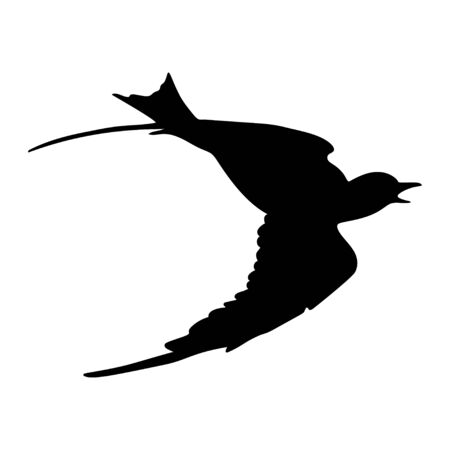Flying white dove. Silhouette isolated on white background. Vector. Ilustracja