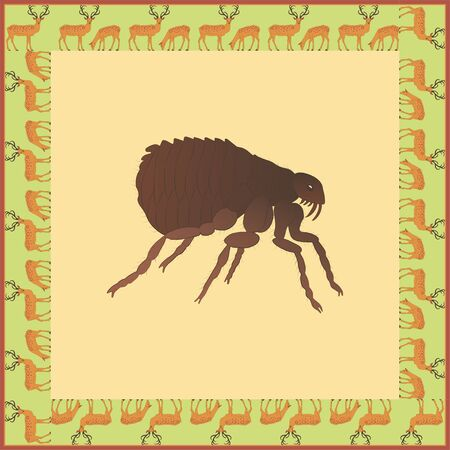 Flea color illustration in vintage square frame. Art Nouveau style. Vector.  Vectores