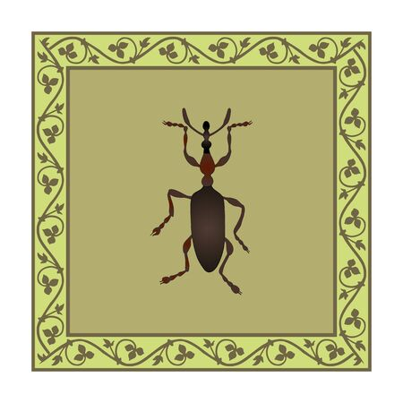 Weevil color illustration in medieval floral frame. Vector.
