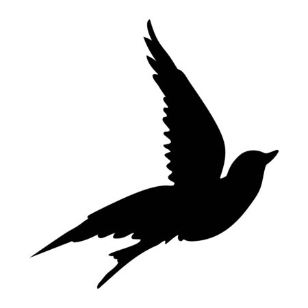 Flying dove. Silhouette isolated on white background. Vector.