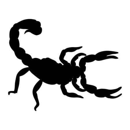 Scorpion silhouette isolated on white background. Vector.