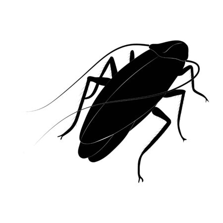 Cockroach silhouette isolated on white background. Vector. Illustration