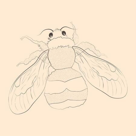 Bumblebee illustration. Hand drawn isolated sketch. Vector.