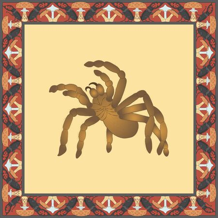 Tarantula color illustration in vintage square frame. Art Nouveau style. Vector.