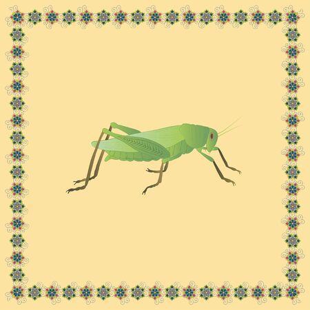 Locust color illustration in japanese ornament frame. Vector.