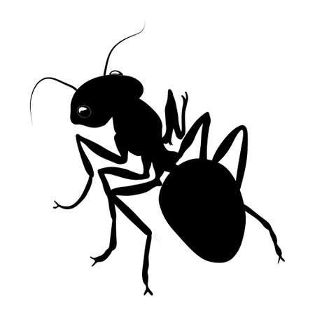 Ant silhouette isolated on white background. Vector.