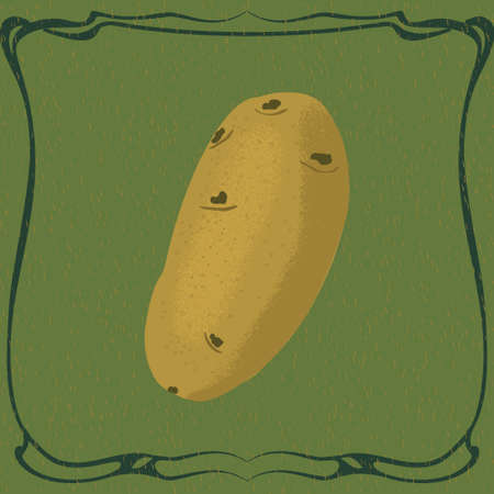 Potato in vintage frame. Hand drawn illustration. Vector. Illustration