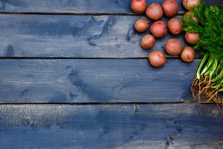 agriculture: Baby red potatoes and dill ready for cooking over old wooden background. Fresh organic vegetables. Healthy food from garden. Health, vegetarian food or cooking concept. Stock Photo