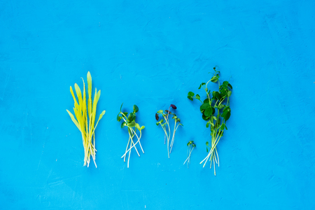Healthy cress salad different kind on bright blue background top view. Natural organic food style. Flat lay