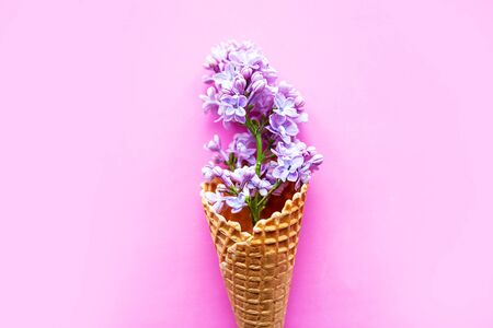 Beautiful lilac flowers in waffle cone. Minimal concept 스톡 콘텐츠