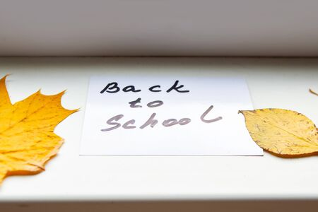 Card with message Back to School and autumn yellow leafs on the windowsill 스톡 콘텐츠