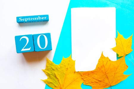 September 20. Wooden handmade calendar and white mockup blank with dry maple leaves on geometric white and blue background 스톡 콘텐츠