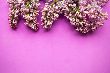 Blooming lilac frame on purple background. Copy space for the text. banner