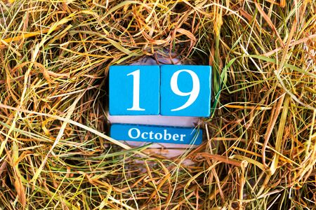 October 19. Blue cube calendar with month and date on dry straw background