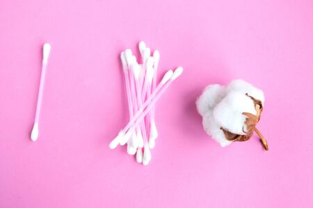 Cotton buds and cotton flower on pink pastel background, top view