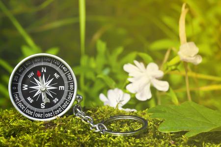 Kompass auf dem Moos im Wald mit Sonnenlicht