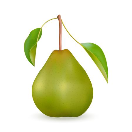 Realista pera verde con hojas. Ilustración de vector, aislado sobre fondo blanco.