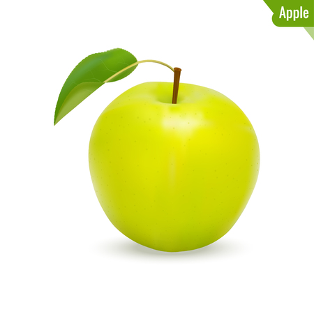 Realistic apple with leaf. Vector illustration, isolated on white background. Ilustração