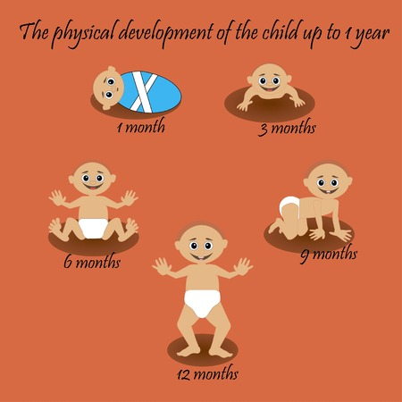 3 6 months: The physical development of the child up to 1 year