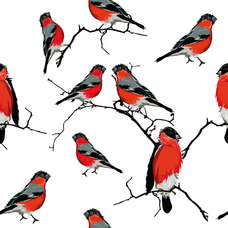 Bullfinches on the branch seamless pattern Vector