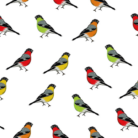 Color birds seamless print Vector