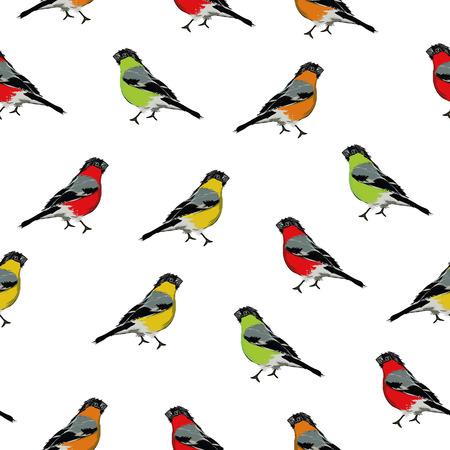 Color birds seamless print Illustration
