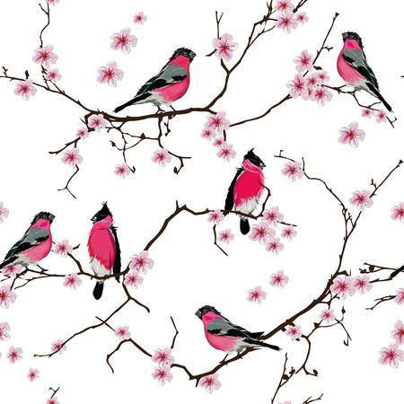 Bullfinches en el patrón sin fisuras rama de sakura, EPS10 archivo Vectores