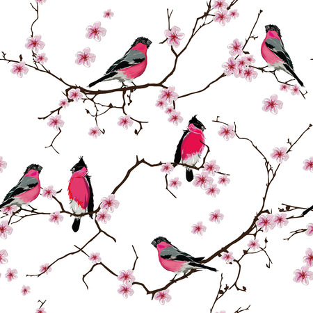 cherry pattern: Bullfinches on the sakura branch seamless pattern, EPS10 file