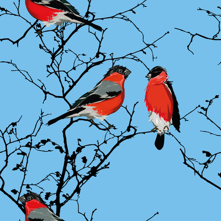 Bullfinches on the branch cyan seamless pattern, EPS10 file Vector