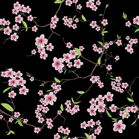 Chinese sakura black seamless pattern, EPS10 file Çizim