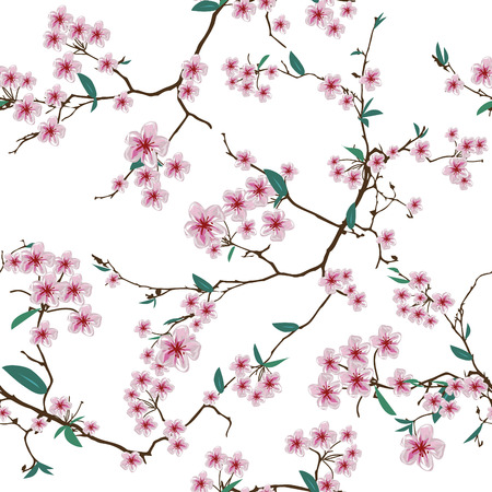 Chinese sakura white seamless pattern, EPS10 file Illustration