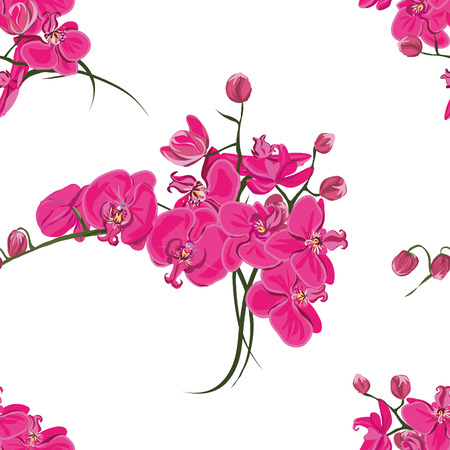 pink orchid: Pink orchid seamless pattern