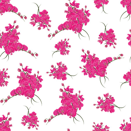Magenta orchid rococo seamless pattern 向量圖像