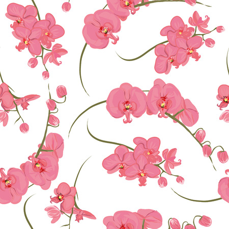 pink orchid: Pink orchid rococo seamless pattern Illustration