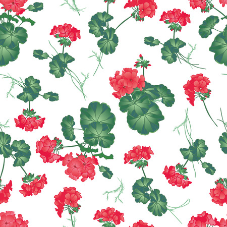 indoor bud: Soft red geranium seamless pattern, EPS10 file Illustration
