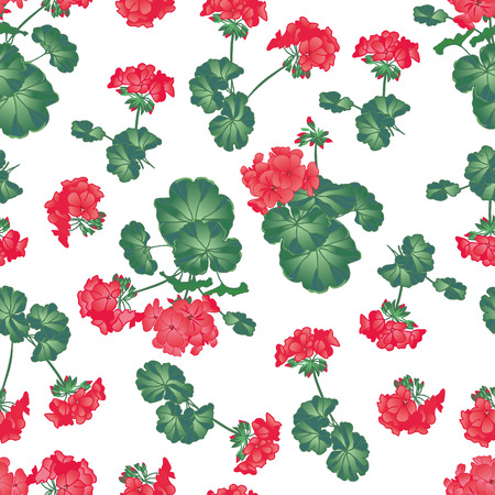 Soft red geranium seamless pattern, EPS10 file Vettoriali