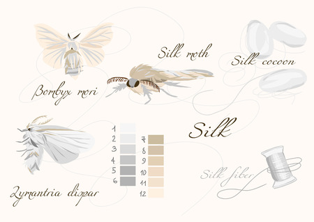 Silk teelt witte naadloze vector set Stock Illustratie