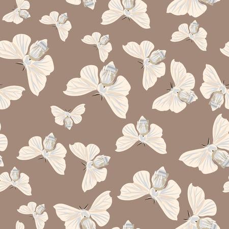 amande: Pyrale des amandes Silk seamless vector pattern Illustration