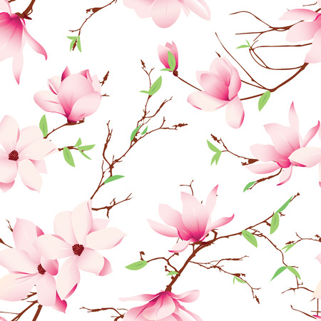 Spring magnolia flowers seamless pattern Vector