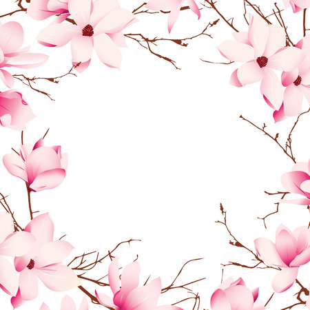 pink flower: Delicate magnolia flowers vector card