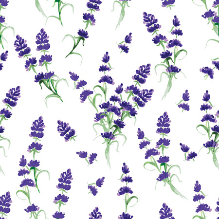 lavender oil: Watercolor violet lavender seamless vector print Illustration