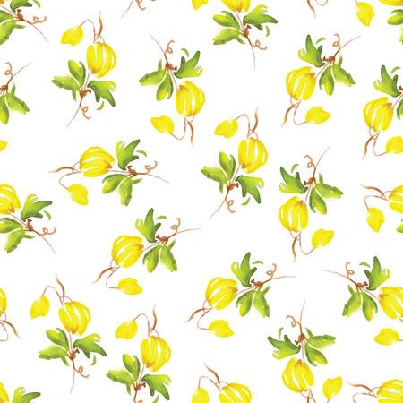 Fiori gialli clematide acquerello senza soluzione di vettore di stampa Archivio Fotografico - 37930911