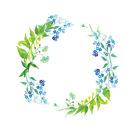 Forget-me-not et prairie herbe aquarelle vector frame round Banque d'images - 38327381